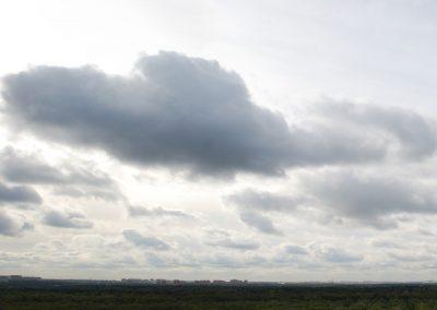 Panorama9133 × 2214