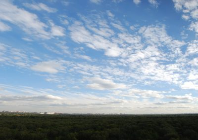 Panorama 9626 Х 3297